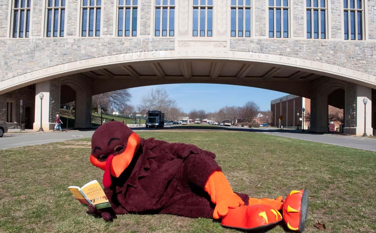 Virginia Tech Hokies HokieBird