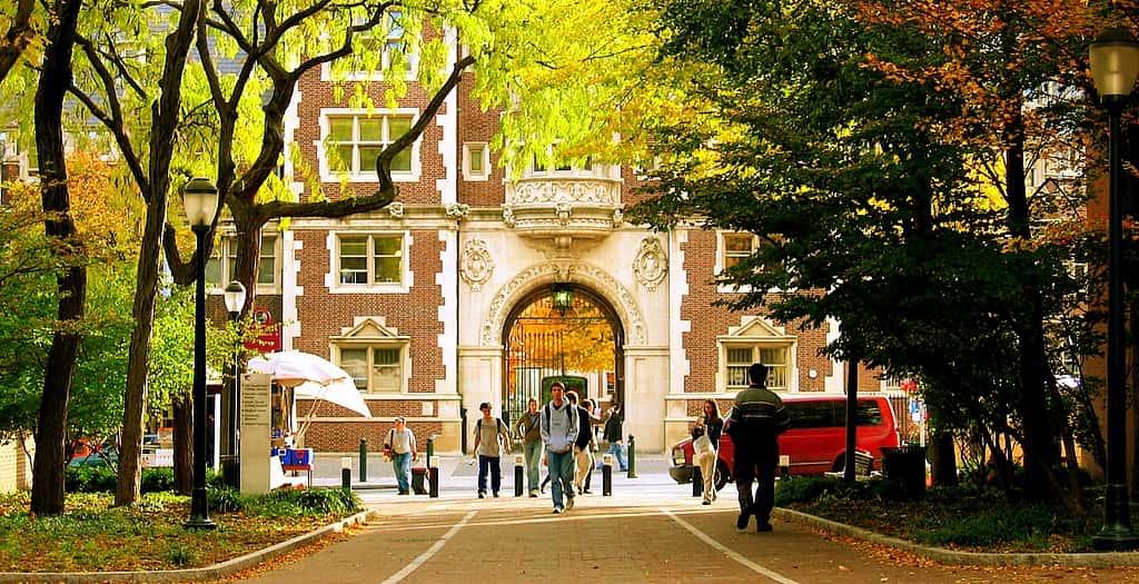 University Of Pennsylvania 65.22%