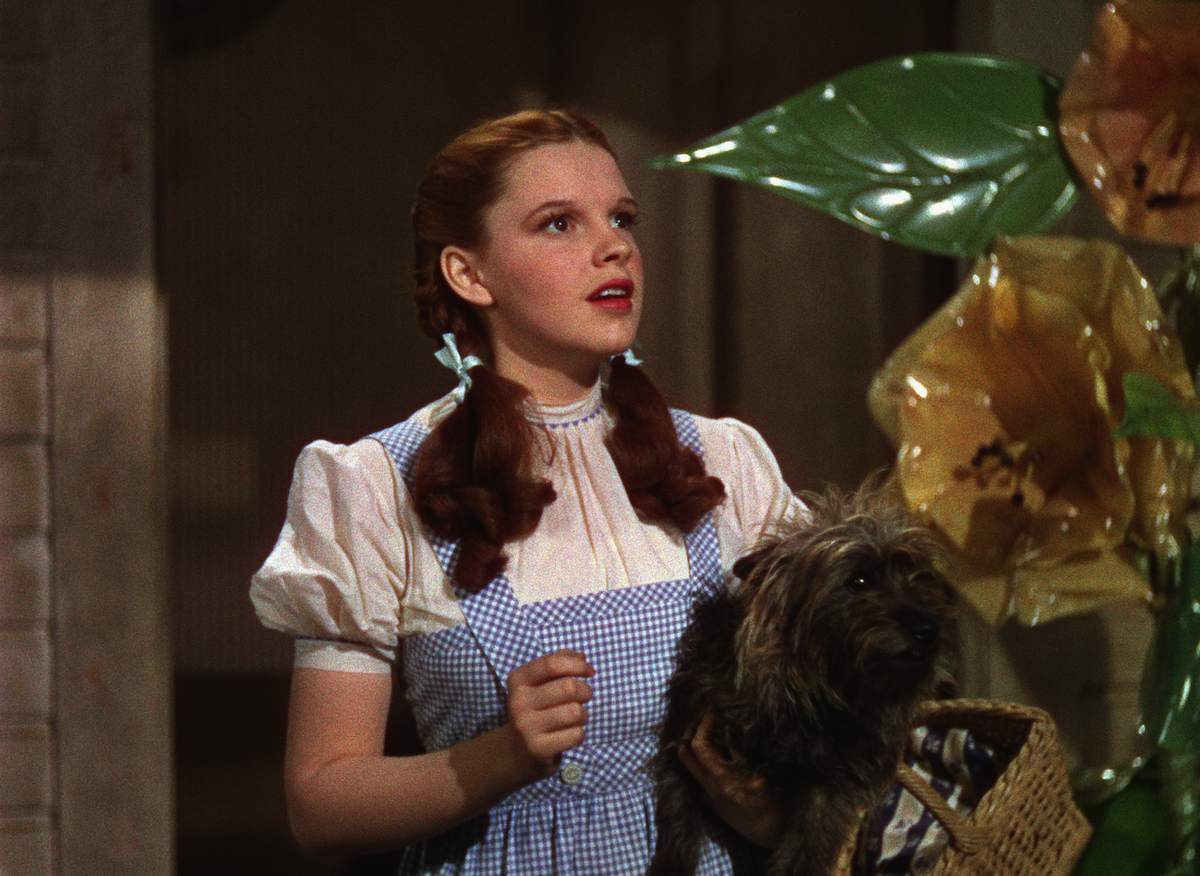 Toto Was Paid More Than The Munchkin Actors