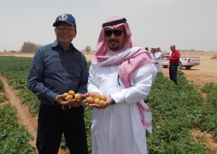 Saudis Farming America