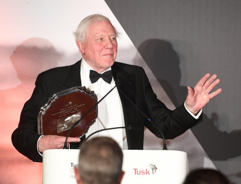 Sir David Attenborough – 80 Million