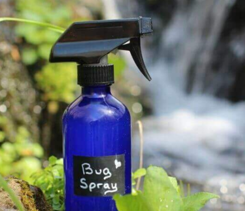 DIY  Insect Spray