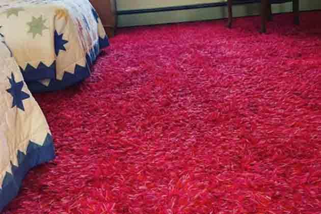 Using Carpet Anywhere